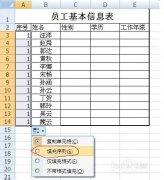 Excel单元格快捷填充方式三种